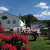 Glengoyne Distillery in bloom